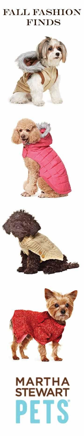 Fall fashion apparel from Martha Stewart Pets at PetSmart #Marthastewartpets #petsmart