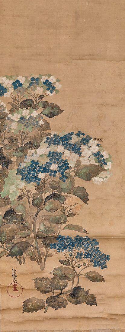 Hydrangeas. Attributed to Ogata Korin. Japanese hanging scroll. Edo Period.
