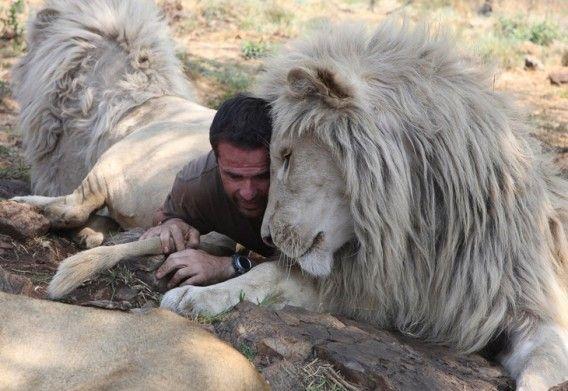 「ライオンと交信できる男」、ケビン・リチャードソンとライオンたちの画像特集 : カラパイア