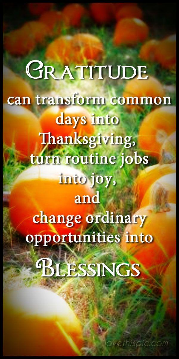 Gratitude holiday thanksgiving pinterest pinterest quotes blessings thanksgiving quotes turkey day