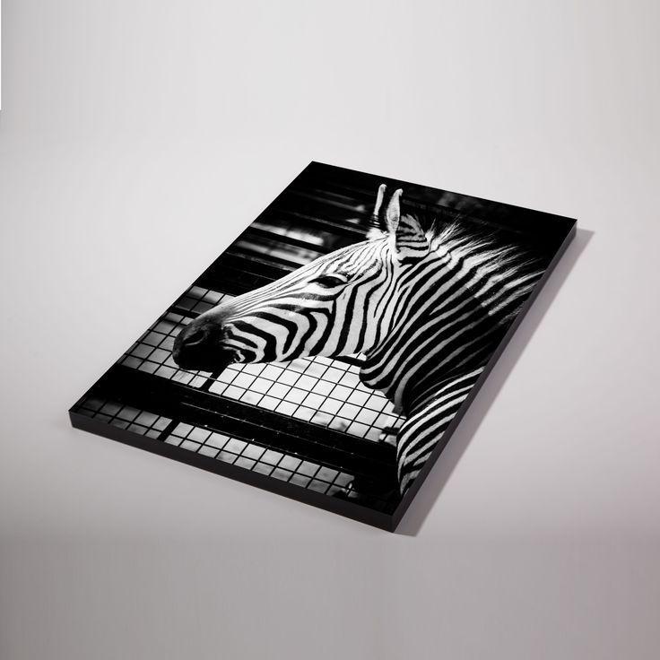 Vanaf € 8,95 heb je bij Het Afdrukhuis een fotopaneel met een eigen foto/afbeelding. Een lichtgewicht paneel makkelijk neer te zetten of op te hangen.