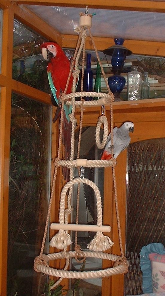 NEW NATURAL SISAL ROPE PERCH PARROT TOY SWING RINGS WITH BELL in Pet Supplies, Birds, Toys | eBay