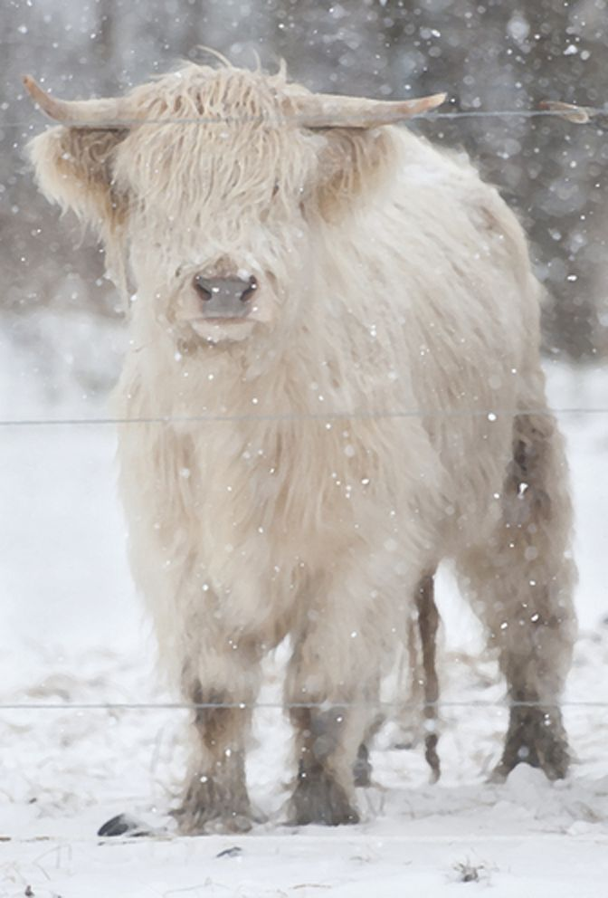Beauty in Ohio's Farmland.  December 28, 2012