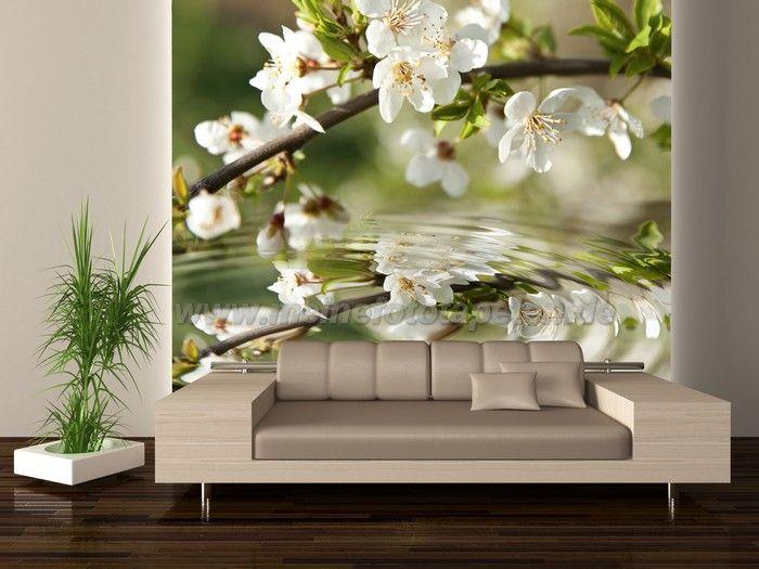 Blühender Mirabellenbaum - Frühling auf der Wand - Fototapete mit grünen Blüten, Bäumen, Pflanzen