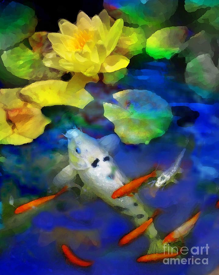 29 best images about koi fish on pinterest koi art for Koi prints canvas