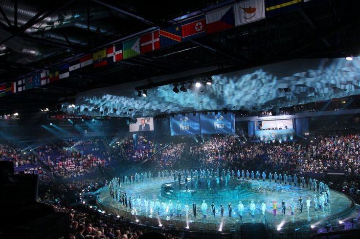 Водные виды спорта FINA История
