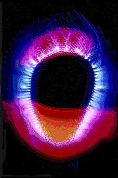 Siamo fatti di luce,il corpo umano emette e comunica attraverso i biofotoni
