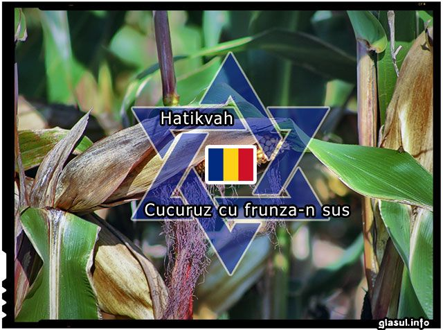 SURPRIZ?: Imnul Israelului este o prelucrare a unui c?ntec popular rom?nesc � �Cucuruz cu frunza-n sus�. VIDEO
