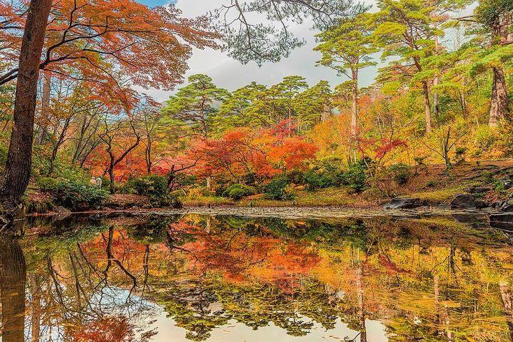 * * * 2017 弥彦公園もみじ谷🍁✨ * * location: niigata / japan * * 雪降る前の 写真のストック出しときまーす。 * * * #弥彦公園もみじ谷 #弥彦 #紅葉 #special_spot_member #広がり同盟メンバー #niigatapic_member #daily_Photo_jpn #art_of_japan_ #lovers_amazing_group #whim_fluffy #japan_daytime_view #inspring_shot #impression_shots #ray_moment #shotz_times #nipponpic #visitjapanjp #photo_travelers #retrip_nippon#japanmagazine #wp_flower #s_shot #bestjapanpics_紅葉2017 #retrip_nippon #wp_紅葉2017 #はなまっぷ紅葉2017 #team_jp_秋色2017 #Lovers_Nippon_2017秋コン ...