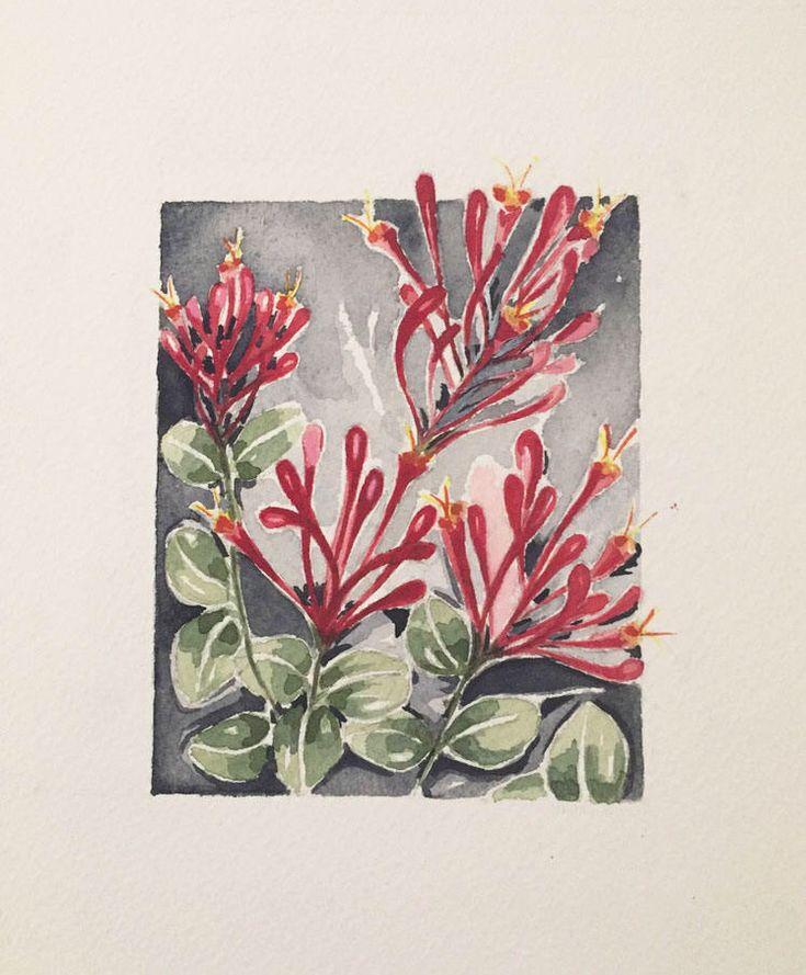 Quiero compartir lo último que he añadido a mi tienda de #etsy: Flores de Lonicera Rojo-Fucsia Watercolor Art Prints Botanical Decoración . Colección BOTANICAS.