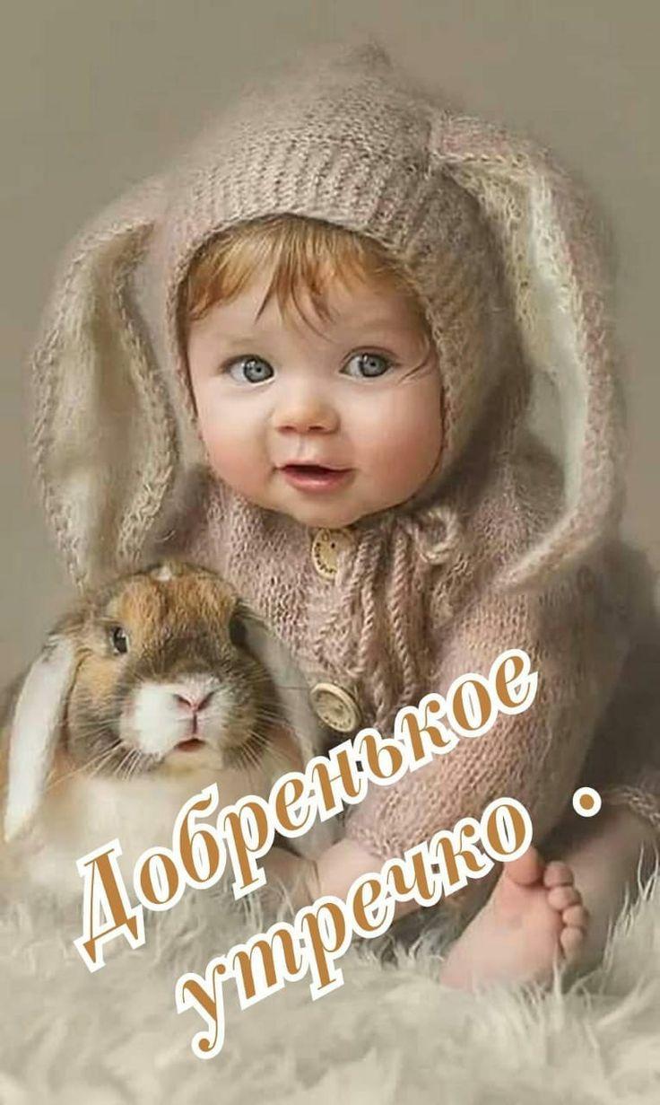 сегодня смешные картинки с младенцами и животными с добрым утром бюстгальтеров без