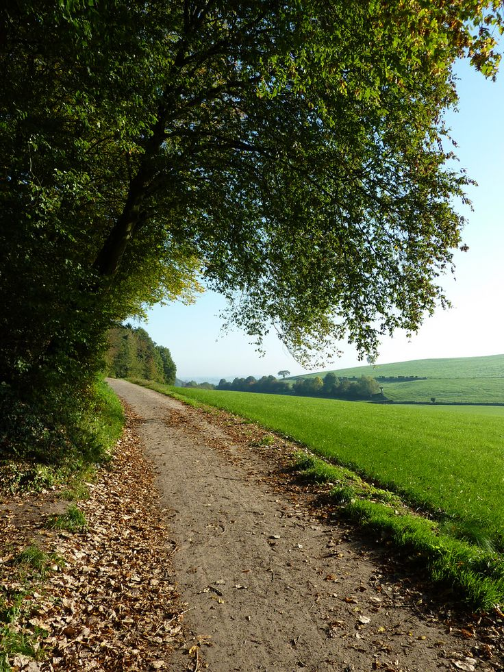 Zuid-Limburg.