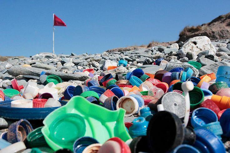 Resultado de imagen de fotos de la contaminacion del plastico