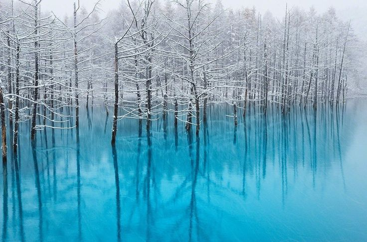 The Blue Pond in Hokkaido Changes Colors Depending on the Weather