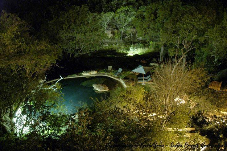 Beautiful pool at Sediba Private Game Lodge.
