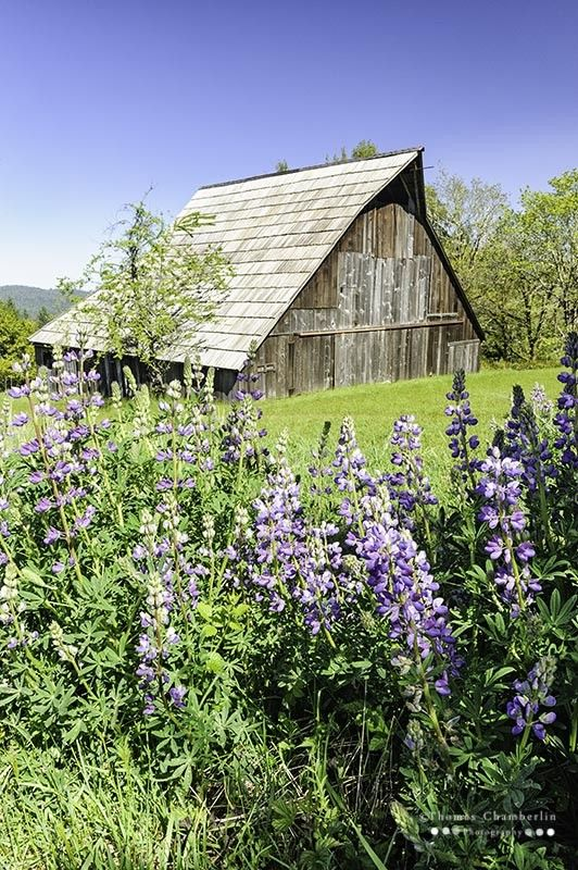 25 Best Ideas About Country Barns On Pinterest Barns