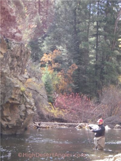 12 best favorite things to do in santa fe images on for Fly fishing new mexico
