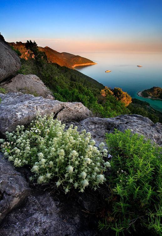 Montokuc - Mljet Island, Croatie! #Voyage #Travel #Croatie