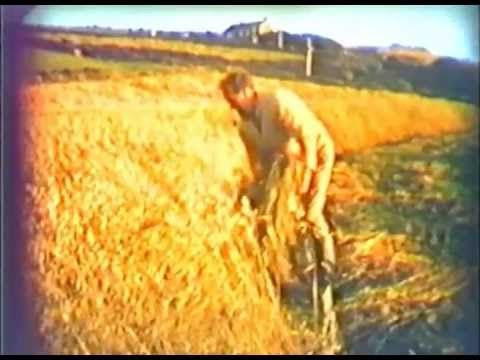 John lives and farms near St.Wenn in mid-Cornwall. In this story John explains the tradition of Crying the Neck which takes place towards the end of Harvest ...