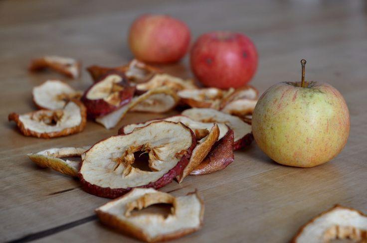 Apfelringe aus dem Dörrautomat!