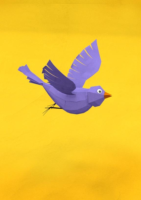 BirdTweets Tweets, Paperie Shit