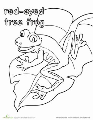 Color the RedEyed Tree Frog Tree frogs, Worksheets and