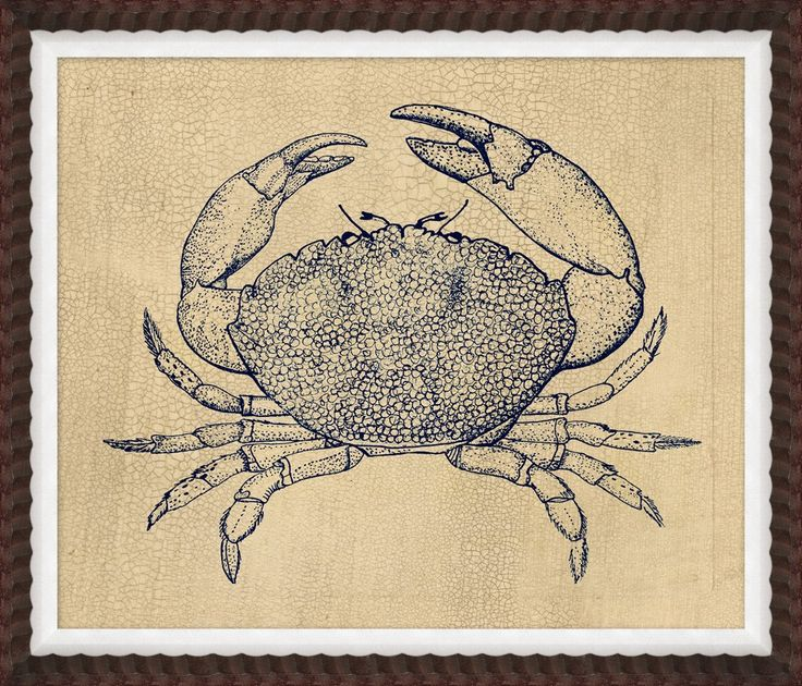 RESELECT 27X23 Indigo Crab Study 2 - Coastal - Our Product