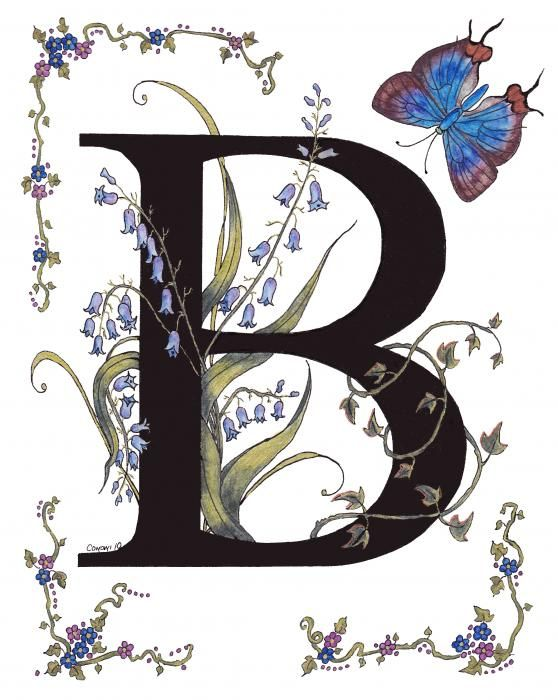 My series of initals for all the letters of the Alphabet. Each flower and butterfly name starts with the letter of the alphabet, this is of Bluebells with a Blue Hairstreak butterfly.