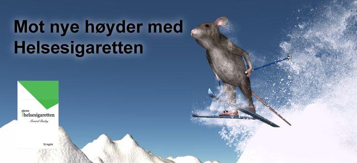 Helsesigaretten mus på skitur