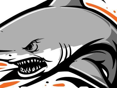 74 best images about san jose shark on pinterest shark