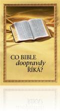 Knihy a časopisy založené na Bibli – vydávají svědkové Jehovovi