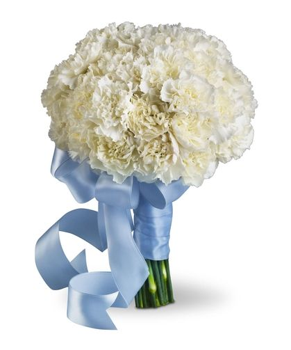 Sweet White Bouquet: Densely packed white carnations form a cloud of beauty, wrapped with light blue satin ribbon. - Radebaugh Florist and Greenhouse - Florist for Towson, Lutherville, Timonium