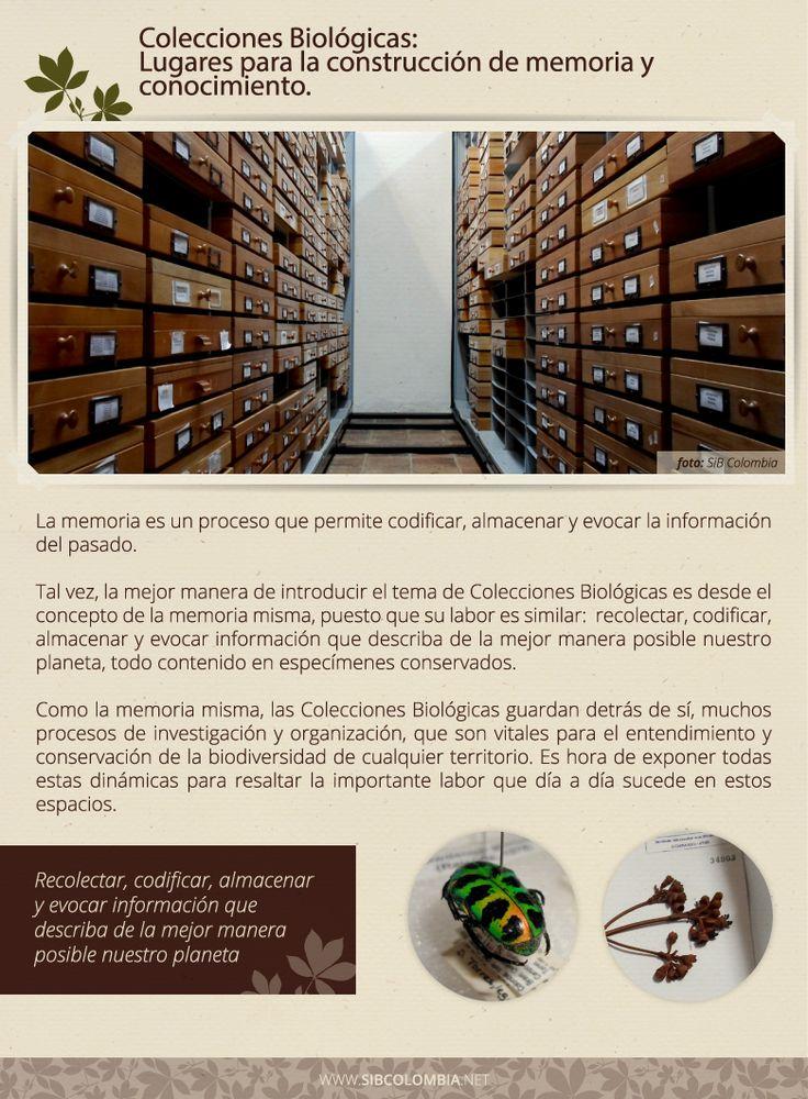#1 Colecciones Biológicas  Producto informativo creado por el SiB Colombia