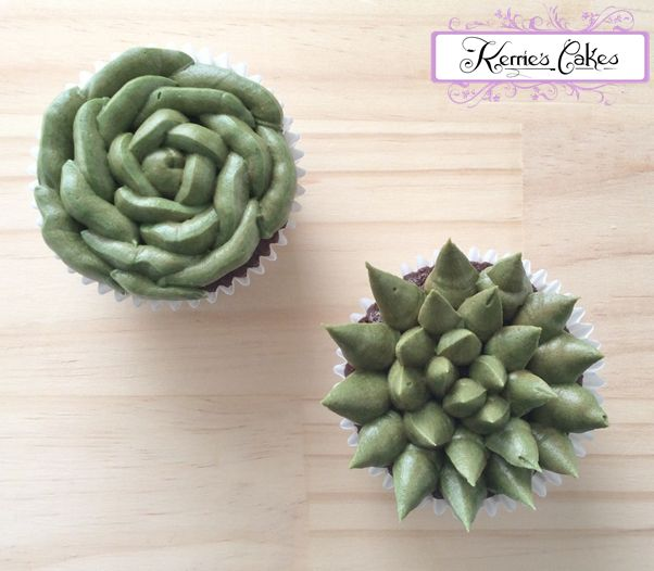 Succulents - Dark Chocolate Mudcake Cupcakes, with Vanilla Buttercream, by Kerrie's Cakes www.kerriescakes.com