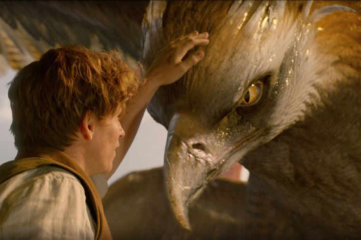 J.K. Rowling's latest blockbuster film adaptation, 'Fantastic Beasts and Where to Find Them,' contains quite the twist. Here's what it means for the franchise. [Warning: Spoilers]