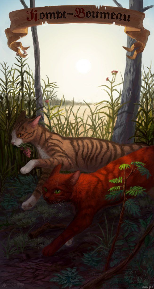 Warriors cats - Squirrelpaw and Leafpaw by Cat-Patrisiya.deviantart.com on @DeviantArt