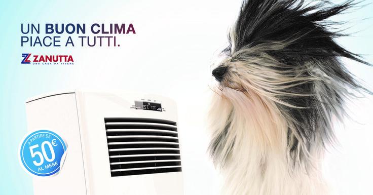 Acquista un climatizzatore con finanziamento senza interessi! In tutti i nostri negozi. #Zanutta