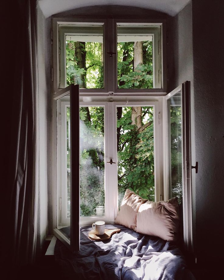 Enjoying the beautiful morning at my window (photo by @oh_hedwig)