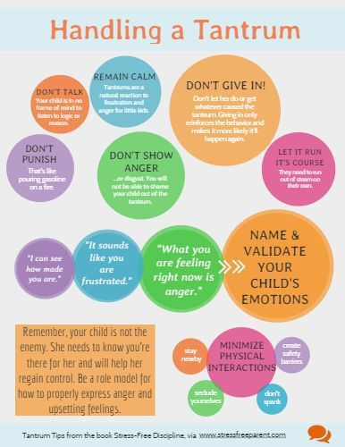 Tips for how parents can handle a Temper Tantrum using positive parenting! Found on infograph.venngag..., repined by Proactive Parenting dot net.