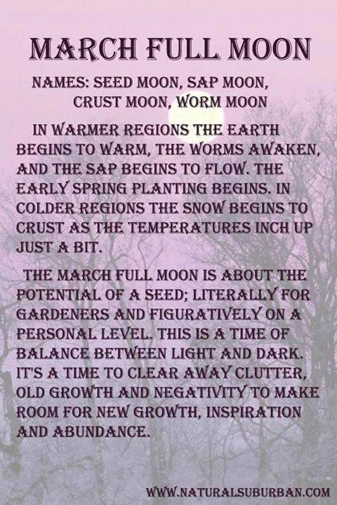 Spring equinox...)* Happy Birthday to my fellow March earthlings ✨☀