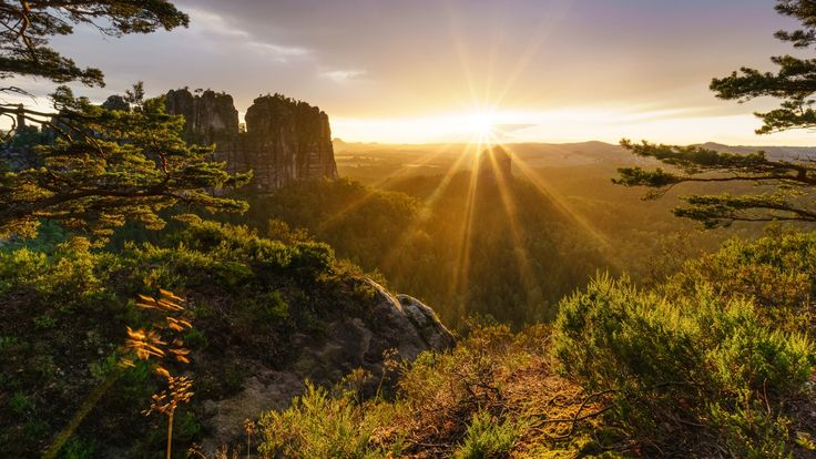 Скачать обои камни, скалы, лучи солнца, лес, деревья, горы, Альпы, Швейцария, раздел пейзажи в разрешении 1920x1080