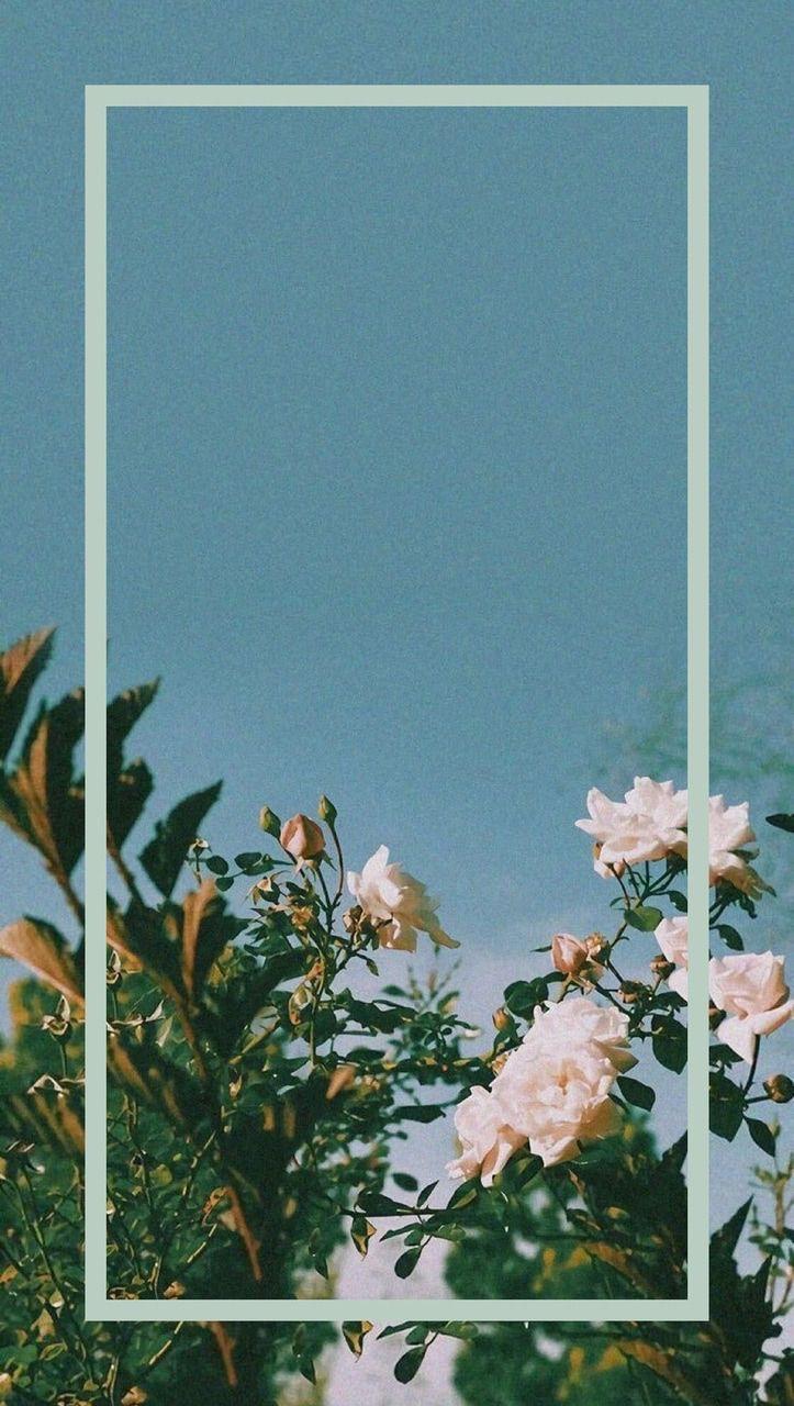 Pin By Idaa Idungg On Wallpaper Aesthetic Iphone Wallpaper Floral Wallpaper Tumblr Wallpaper
