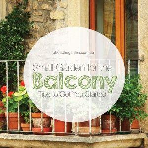 Small Balcony Garden Tips to Get You Started #easterdiy #aboutthegarden