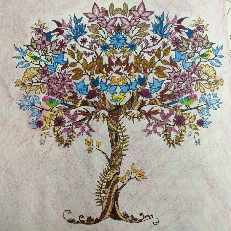 ideias jardim secreto:Jardim Secreto – Johanna Basford – Secret Garden
