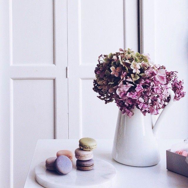 """Wishing you a beautiful #macaronmonday!  #brigsmacs ©"" Photo taken by @brigadeirochoc on Instagram, pinned via the InstaPin iOS App! http://www.instapinapp.com (03/02/2015)"