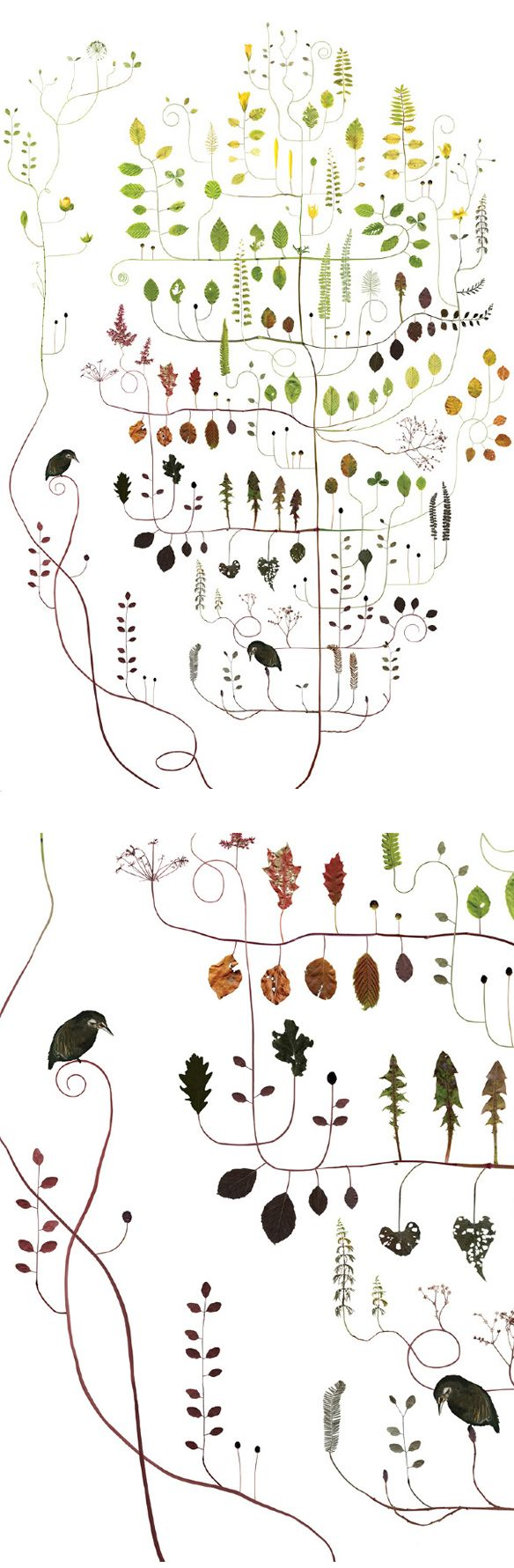 These stunning tree collages by Swedish artist Lotta Olsson are helping me believe that spring is on it's way. So Gorgeous.