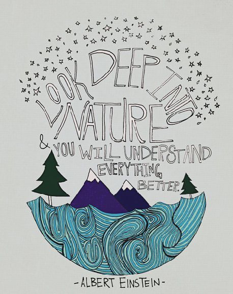 Look deep into nature & You will understand everything better.