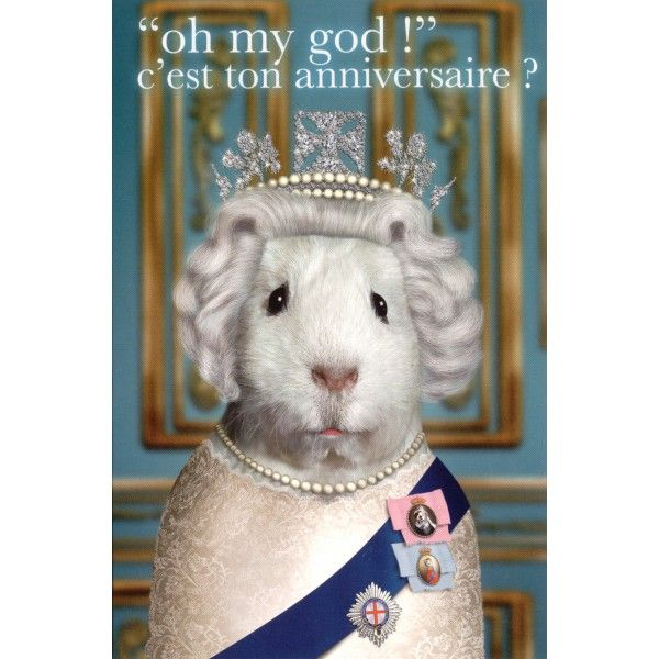 Carte Pets Rock Quot Oh My God Quot C Est Ton Anniversaire