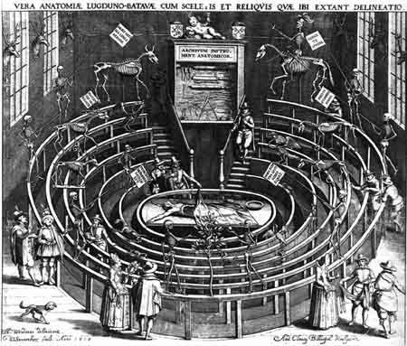 Quoted from: Anatomical theatre, University of Leiden 1596