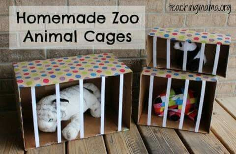 Homemade zoo